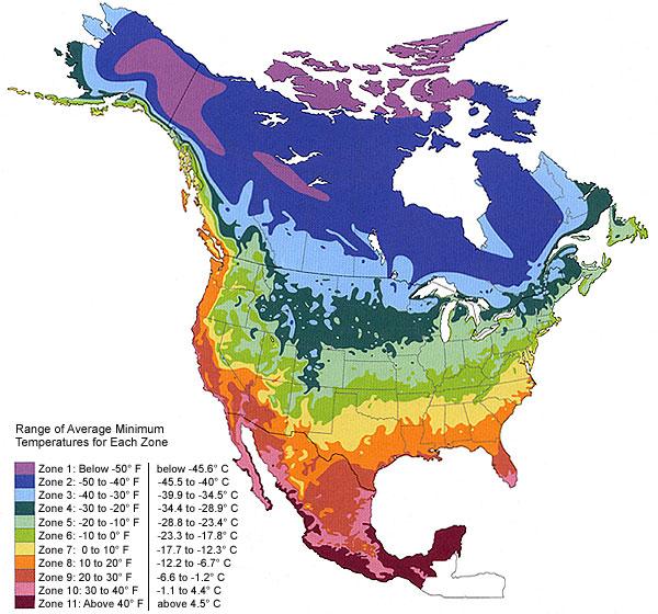hummingbird habitat map
